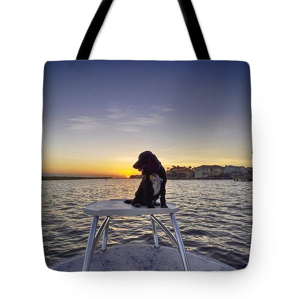 Spaniel At Sunset Tote Bag