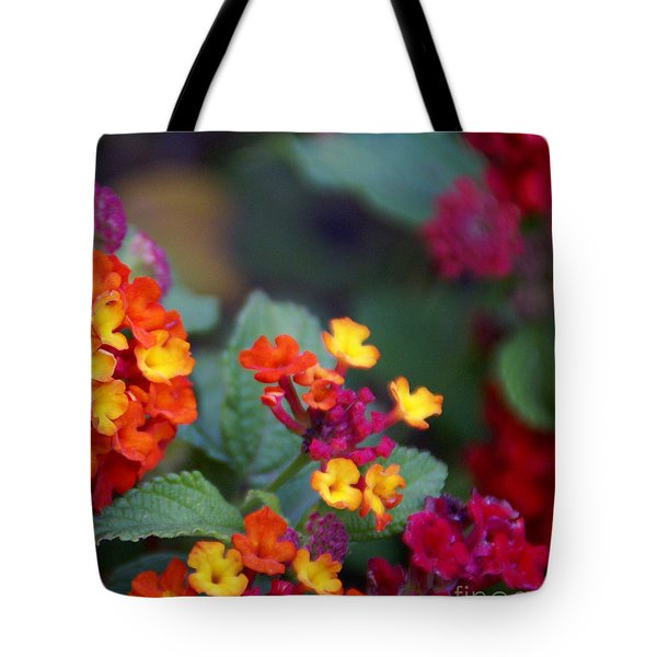 Tote Bag featuring the photograph Spanish Flag by Linda Shafer