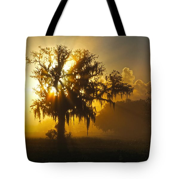 Spanish Morning Tote Bag