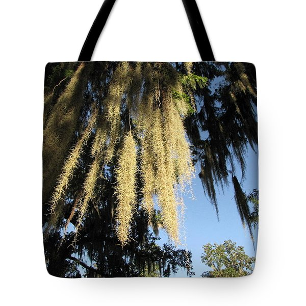 Spanish Moss Canopy Tote Bag by Martha Ayotte
