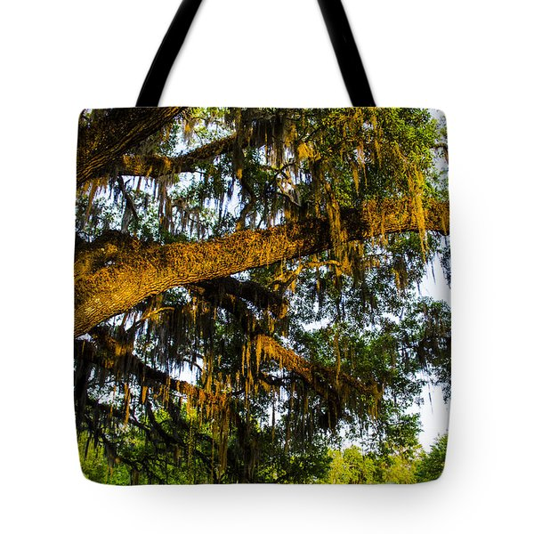 Spanish Moss In The Gloaming Tote Bag