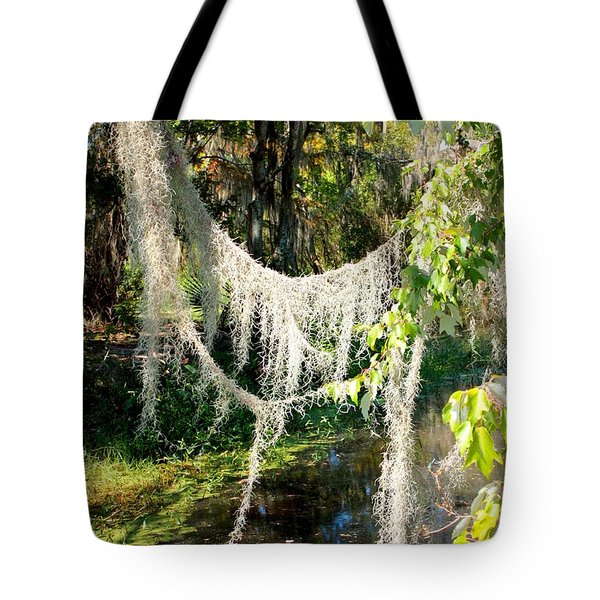 Spanish Moss Over The Swamp Tote Bag by Carol Groenen