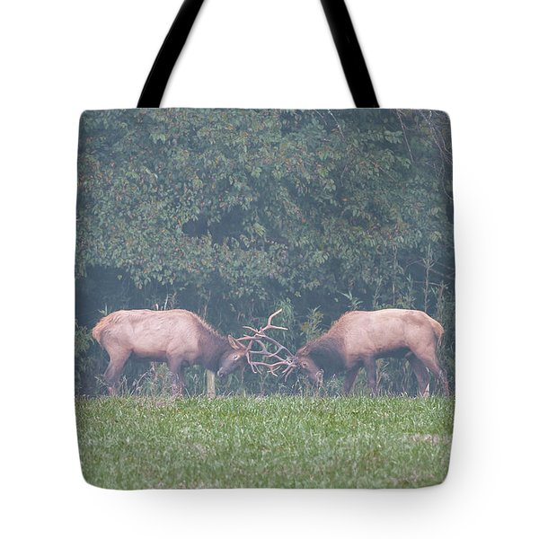Sparking Elk On A Foggy Morning - 1957 Tote Bag