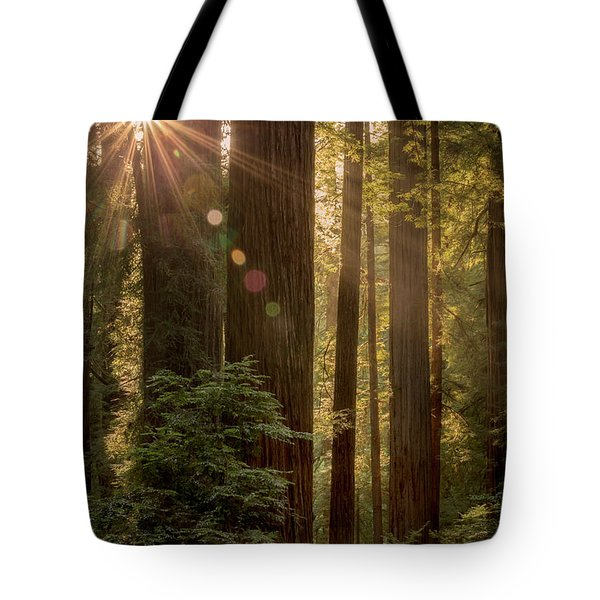 Sparkle In The Redwoods Tote Bag