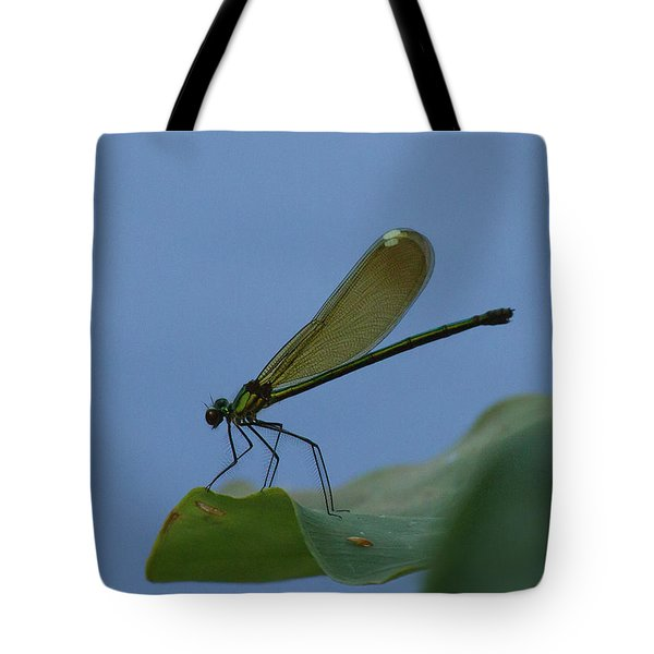 Sparkling Jewelwing #2 Tote Bag
