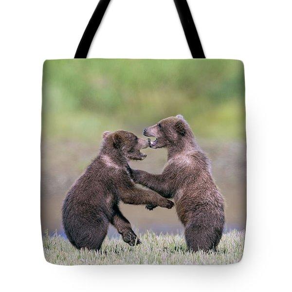 Sparring Cubs Tote Bag