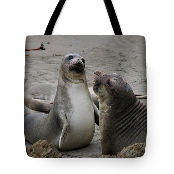 Sparring Seals  Tote Bag