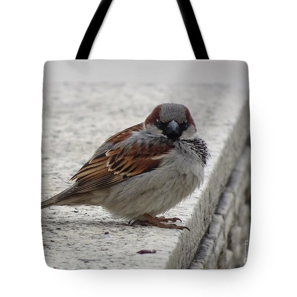 Tote Bag featuring the photograph Sparrow by Angela DeFrias