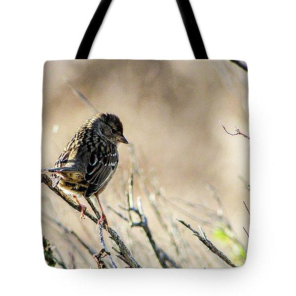 Snarky Sparrow Tote Bag