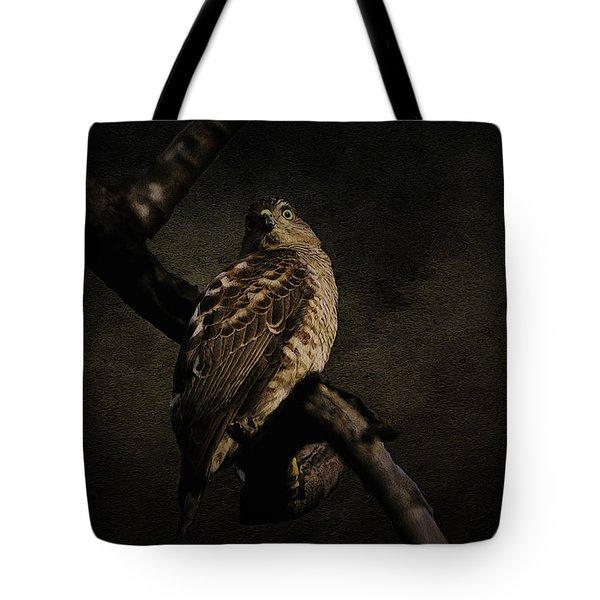 Sparrow Hawk Tote Bag