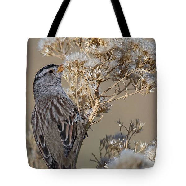 Sparrow Tote Bag