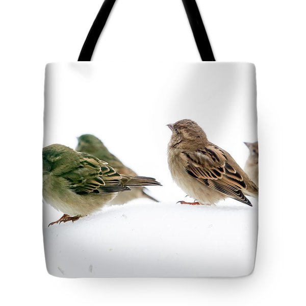 Sparrows In The Snow Tote Bag by Eleanor Abramson