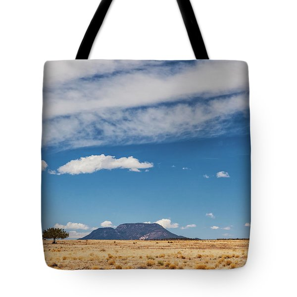 Tote Bag featuring the photograph Sparse by Rick Furmanek