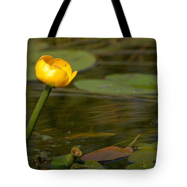 Tote Bag featuring the photograph Spatterdock by Jouko Lehto