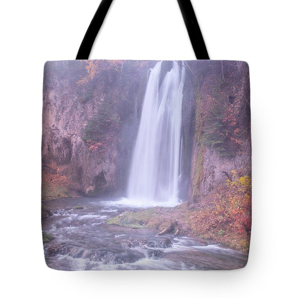 Spearfish Falls Tote Bag