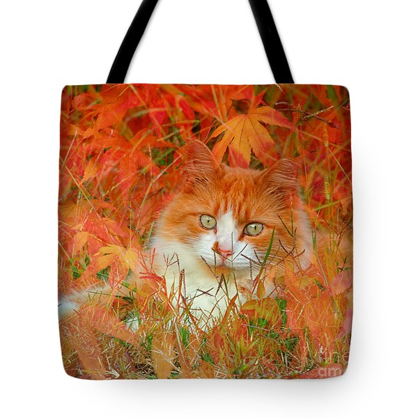 Special Kitty Tote Bag