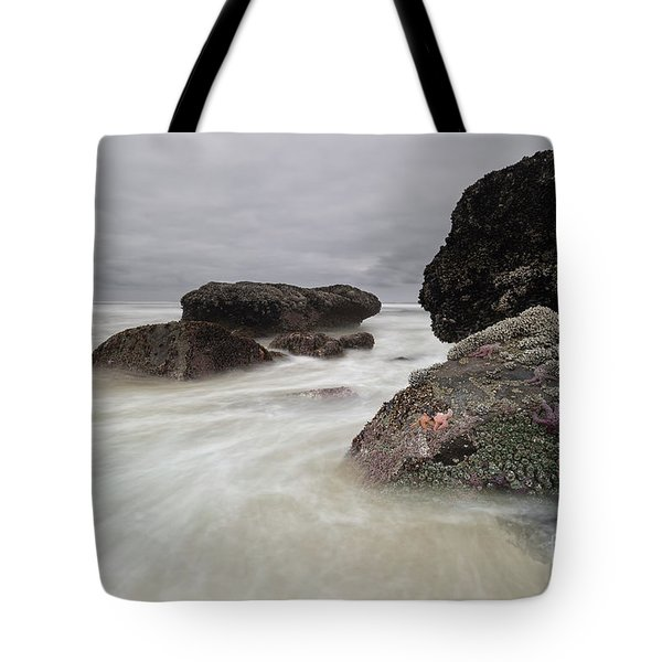 Special Time Of The Year Tote Bag