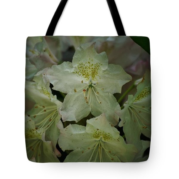 Tote Bag featuring the photograph Speckled In Gold by Ramona Whiteaker