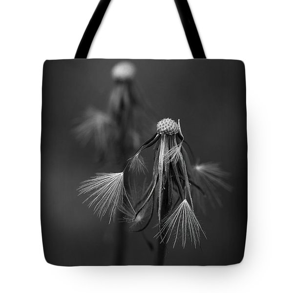 Spent Wishes Tote Bag