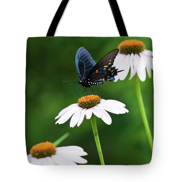 Spice Bush Swallowtail Echinacea Trio Tote Bag by Lara Ellis