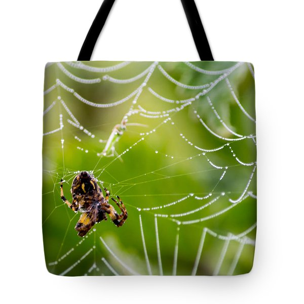 Spider And Spider Web With Dew Drops 05 Tote Bag