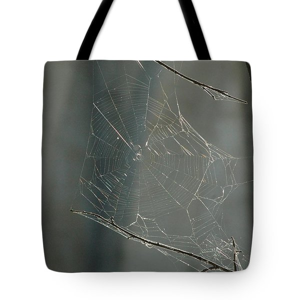 Spider Art Tote Bag by Trish Hale