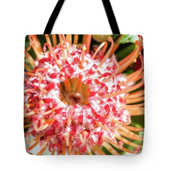 Spider Flower Tote Bag