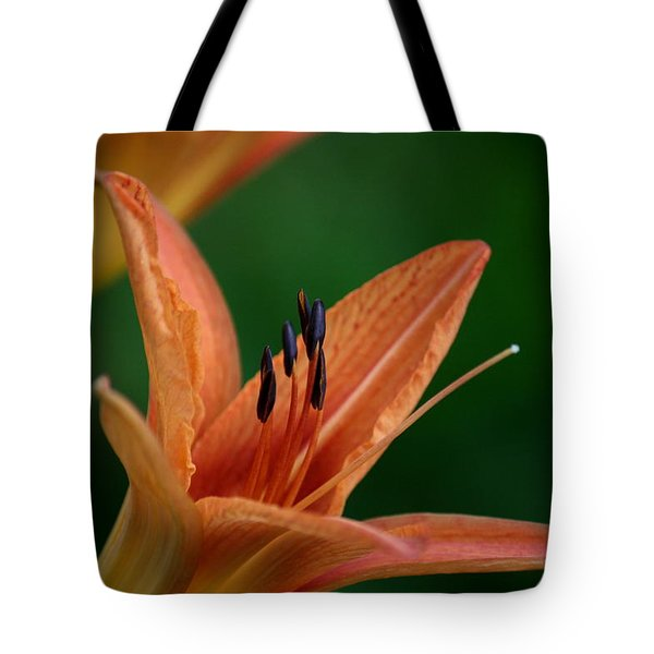 Tote Bag featuring the photograph Spider Lily 2 by Cathy Harper