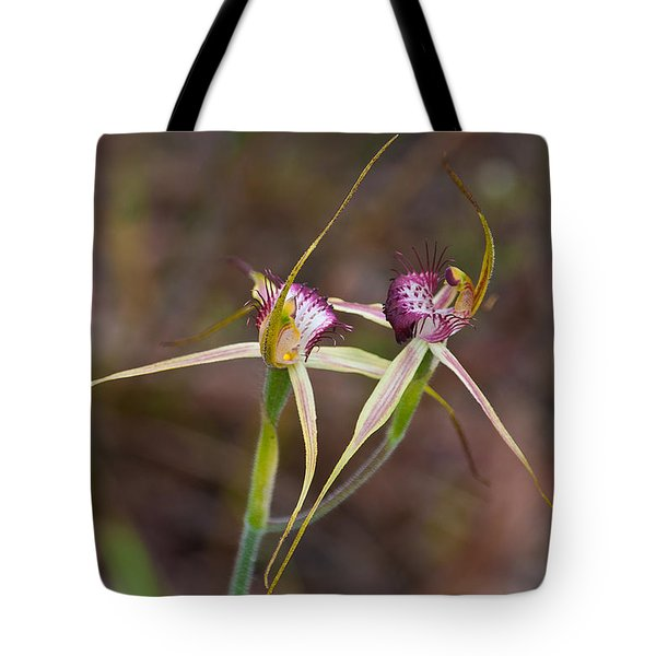 Spider Orchid Australia Tote Bag