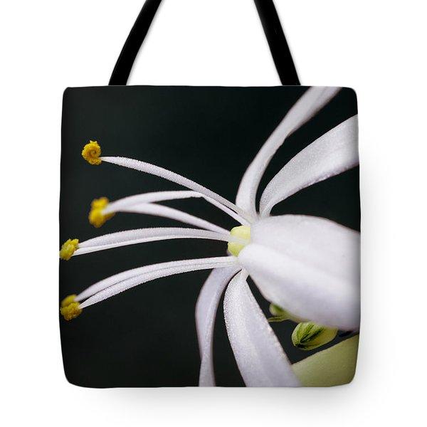 Spider Plant Flower Tote Bag