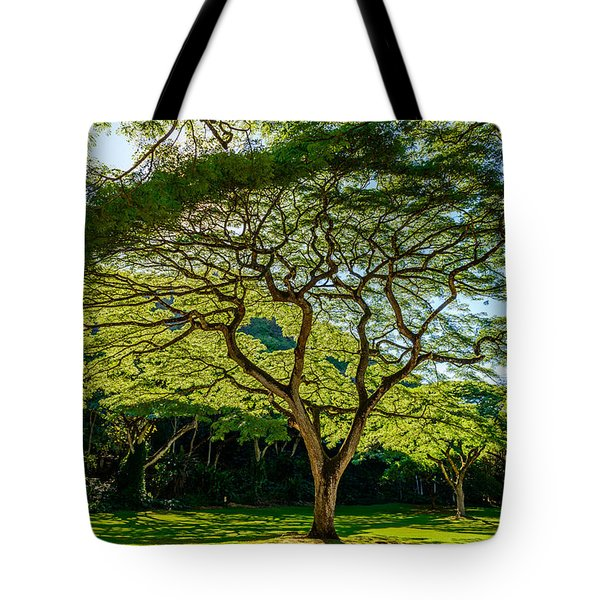 Spider Tree Tote Bag