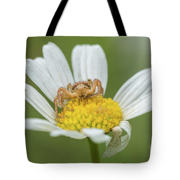 Spider Waits For It's Prey Tote Bag