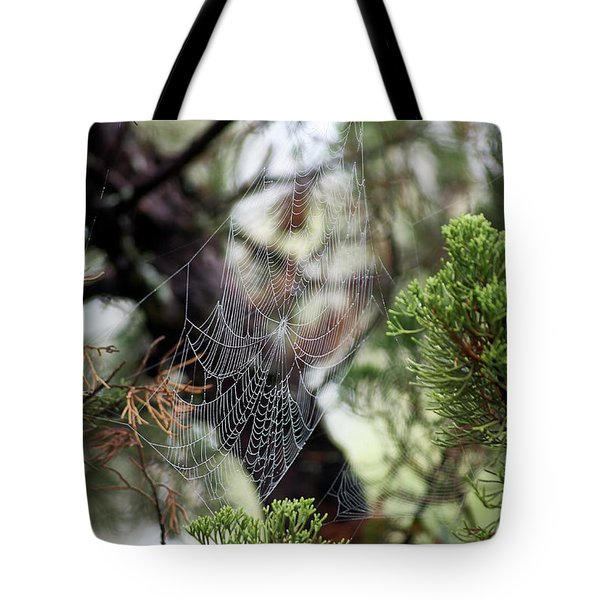 Spider Web In Tree Tote Bag