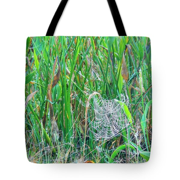 Tote Bag featuring the photograph Spider Web by Kay Gilley