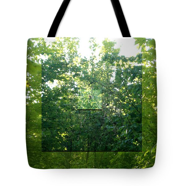 Tote Bag featuring the photograph Spider-web Squares by Michelle Audas
