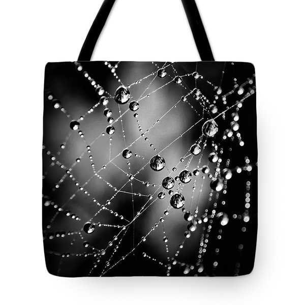Spiderweb No 3 Tote Bag