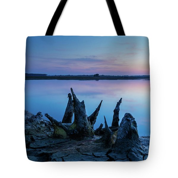 Tote Bag featuring the photograph Spikes In Blue by Davor Zerjav