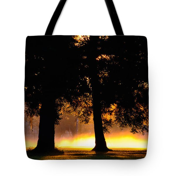 Tote Bag featuring the photograph Spilled Suinshine by Tikvah's Hope