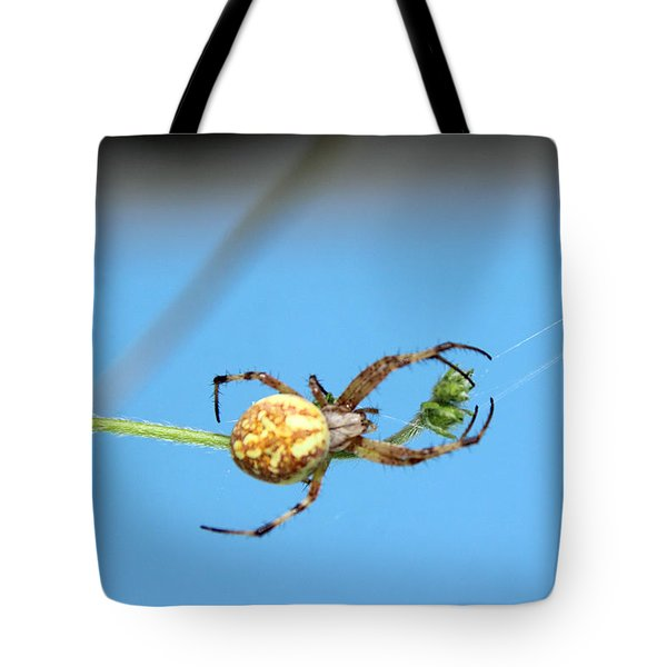 Spinning The Web Tote Bag