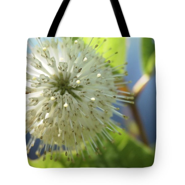Spiral Beauty Tote Bag by Martha Ayotte