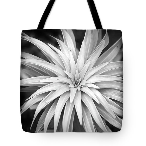 Tote Bag featuring the photograph Spiral Black And White by Christina Rollo