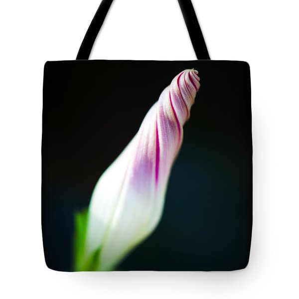 Tote Bag featuring the photograph Spiral by Laura Roberts