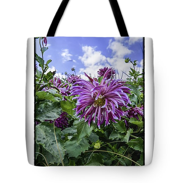 Tote Bag featuring the photograph Spiral by R Thomas Berner