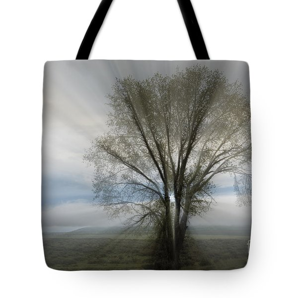 Tote Bag featuring the photograph Spirit Of Nature by Sandra Bronstein