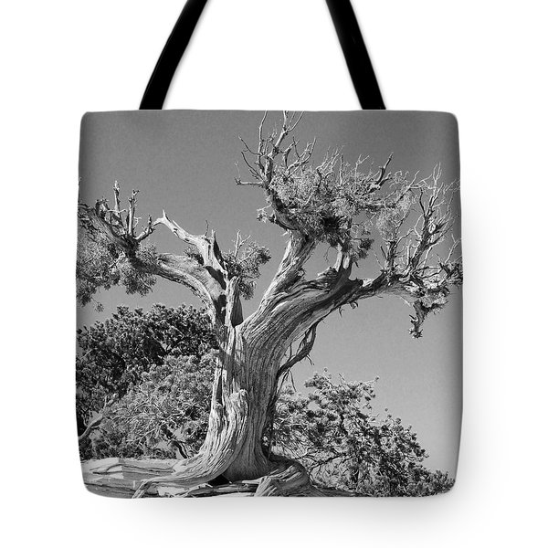 Tote Bag featuring the photograph Spirit Tree by Maggy Marsh