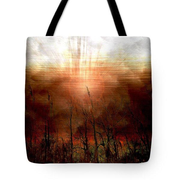 Spiritual Awakening Tote Bag by Linda Sannuti