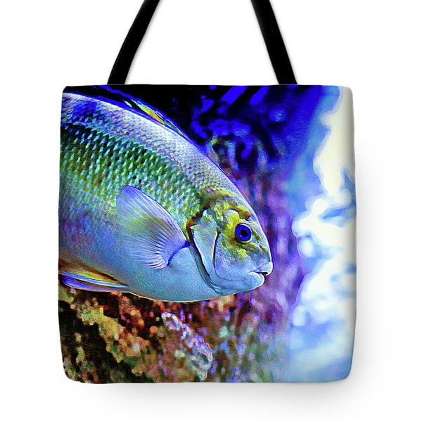 Tote Bag featuring the photograph Splash Of Color by T A Davies