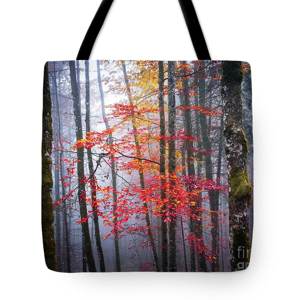 Tote Bag featuring the photograph Splash Of Colour by Elena Elisseeva