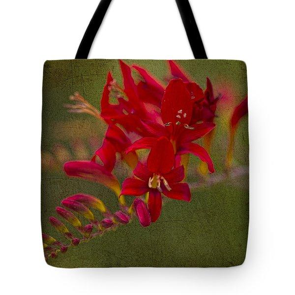 Splash Of Red. Tote Bag