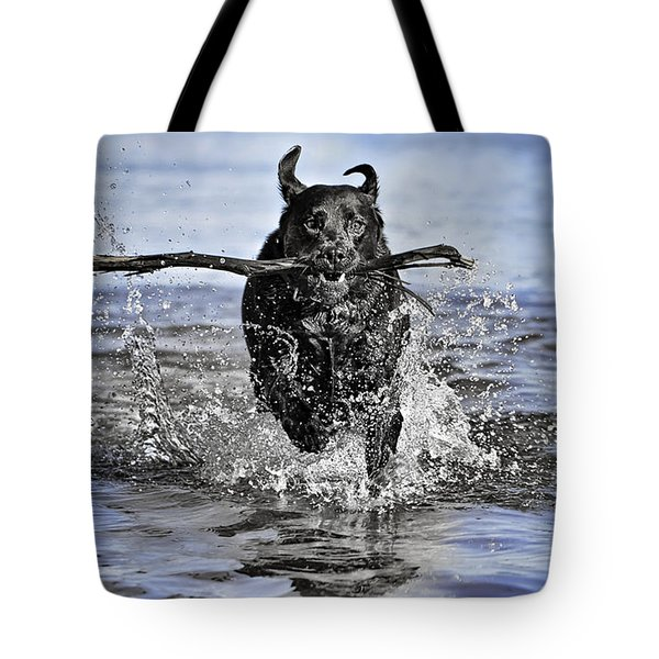 Splashing Fun Tote Bag